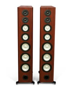 M100 Floorstanding Speakers